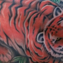 Tiger Full Back Piece